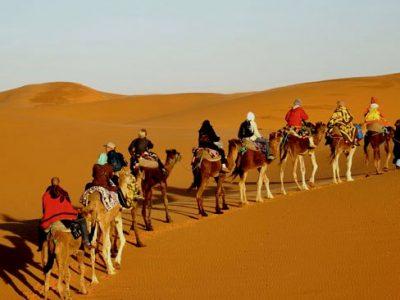 Cholistan - desert